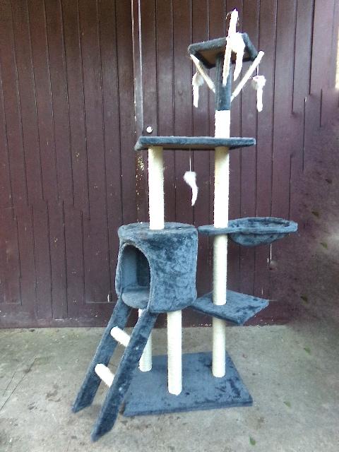 petit arbre chat le sanctuaire des persans d 39 avalone. Black Bedroom Furniture Sets. Home Design Ideas