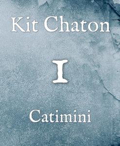 Kit chaton numéro 1
