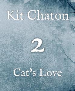 Kit chaton numéro 2