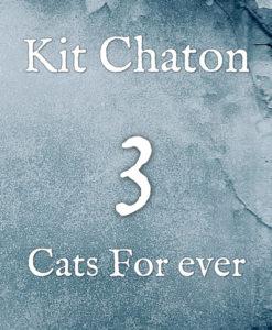 Kit chaton numéro 3