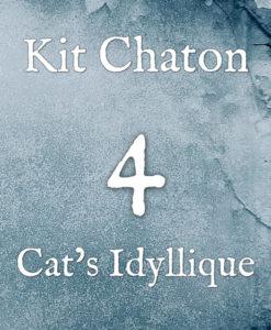 Kit chaton numéro 4